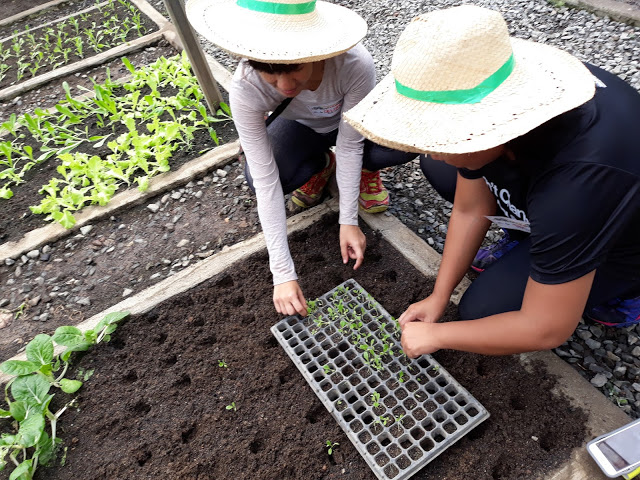 planting-at-adventure-farm-rizal