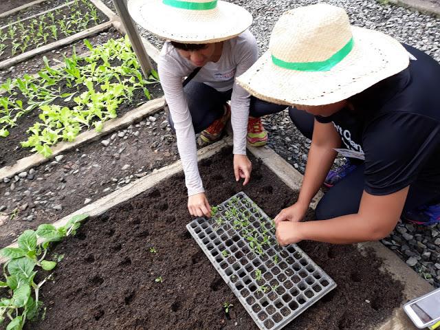 planting-at-adventure-farm-rizal