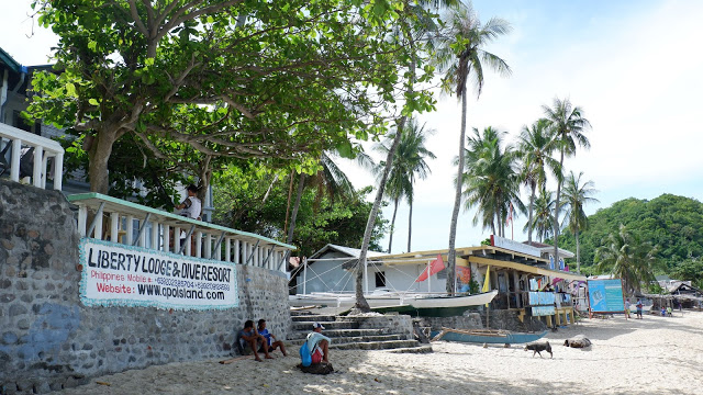 liberty lodge dive resort apo island