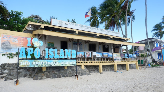 apo island tourist spots