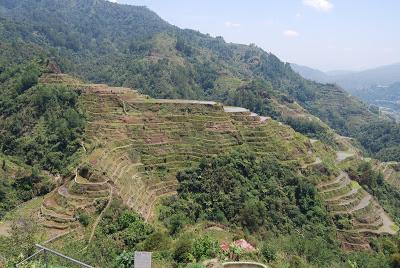 banaue rice terraces philippines