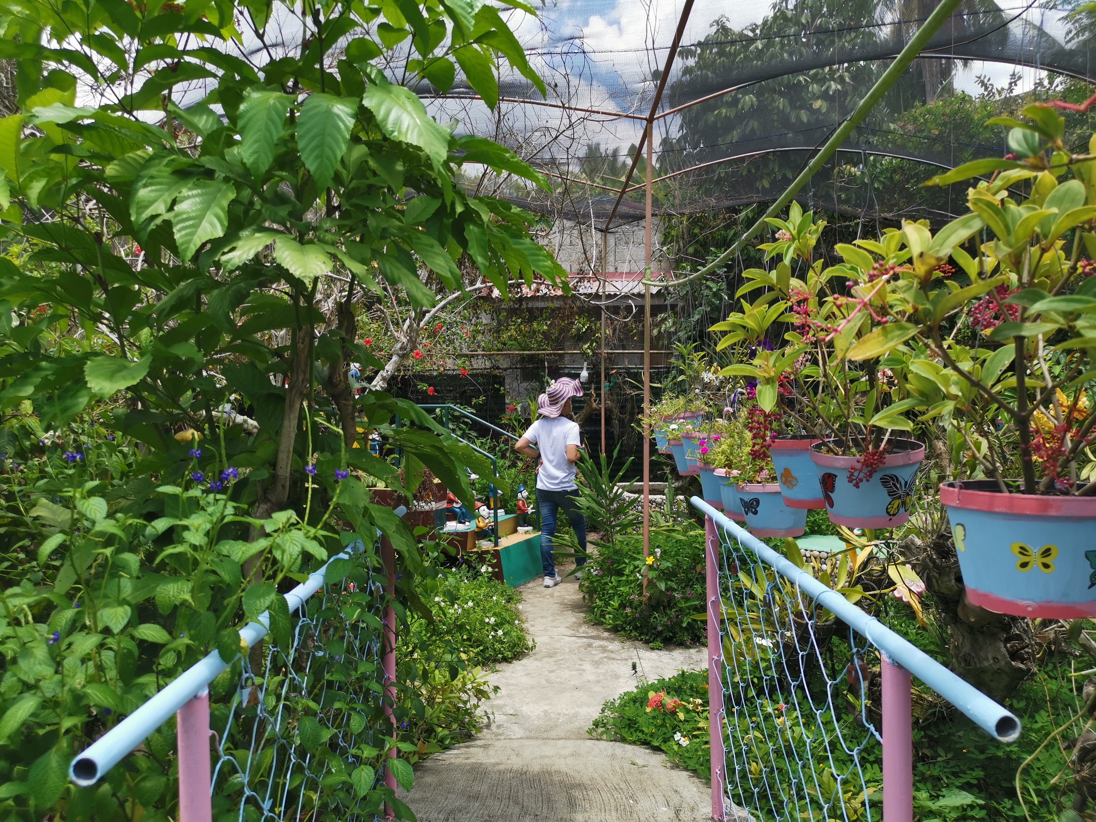 butterfly-farm-marinduque (1)