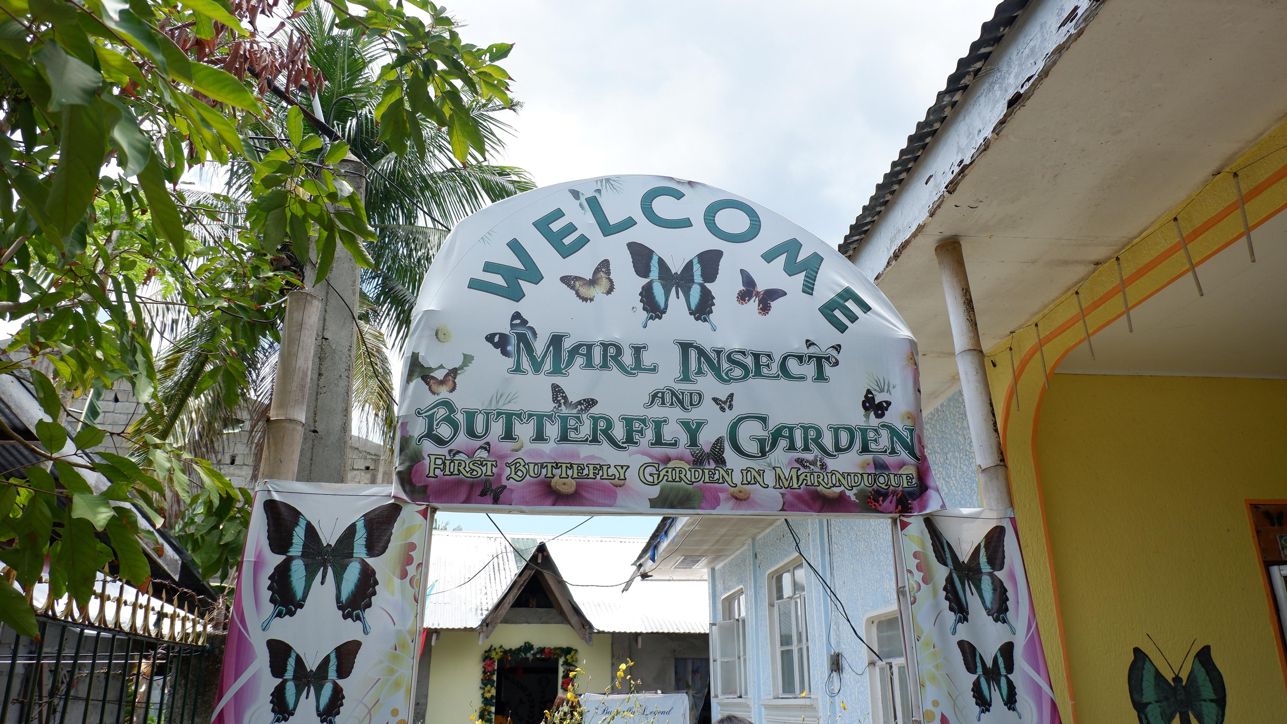 butterfly-farm-marinduque (2)